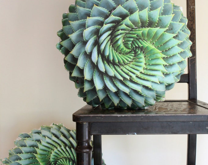 Spiral Succulent decorative pillow made to order (Aloe polyphylla)