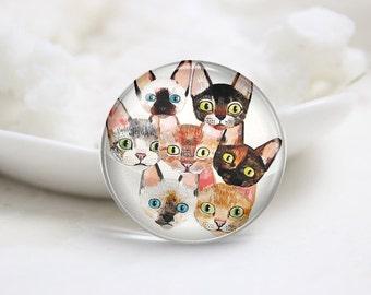 Handmade Round Cat Photo Glass Cabochons (P3589)