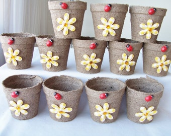 12 Mini yellow daisy ladybug favour pots - party favours - garden party peat pots - ladybug favours - flower yellow daisy favours
