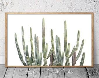 Cactus Print, Cactus Wall Art,Prints,Desert Cactus,Wall Decor,Saguaro Cactus,Cactus Poster,Large Printable Poster,Digital Download,Australia