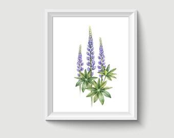 Lavender Flower Watercolor Painting Poster Art Print P307