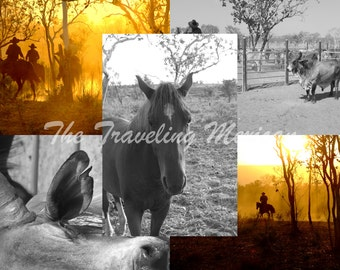 Australian Outback East Kimberley Muster Photography Series - Part 2