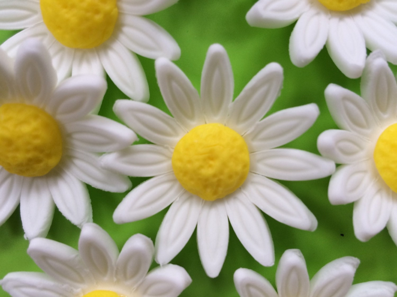 Fondant Flowers 12 White Gerbera Daisy Edible Fondant Flowers