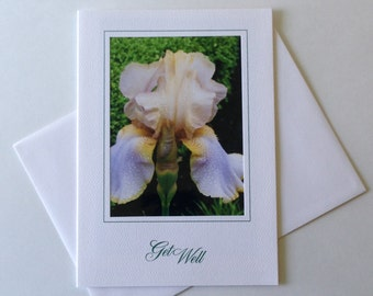 Dew Tipped Iris Photo Note Card Blank Inside Get Well