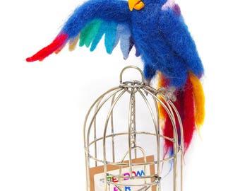 Mr.Guy, The Parrot wool, parrot gift, parrot felting