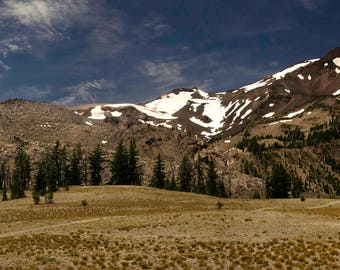 South Sister Meadow