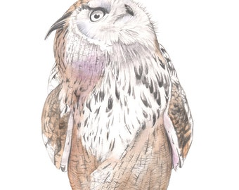 Eagle Owl print. A4 size print, ODW7516, owl drawing, owl watercolor, owl painting, owl illustration, print of owl graphite drawing