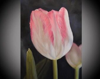 Pink Flower Artwork, Botanical Painting, Tulip Painting, Pink Botanical Art, Flower Painting, Pink Flower Painting, Botanical Picture
