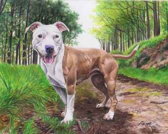 Custom drawn colour pencil portraits ***any subject of your choice**