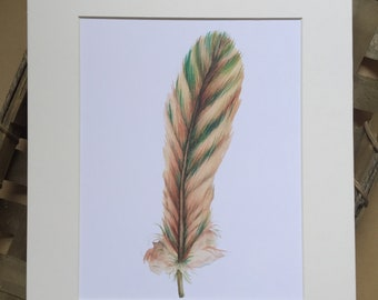 Natural Feather Matted Digital Print