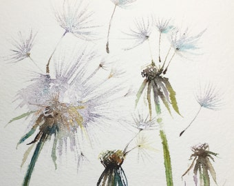 dandelions original botanical watercolor painting of spring