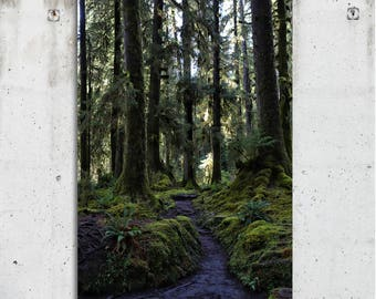 Path Through The Woods - Scenic, Trees, PNW, Photography - Hoh Rain Forest , WA - Fine Art Print - Canvas Gallery Wrap - Metal Print