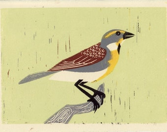 DICKCISSEL - Original Hand-Pulled Linocut Illustration Block Print 5 x 7, Green, Yellow, Brown, Bird, Nature