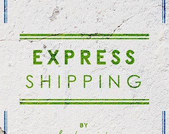 Express Shipping Service (EMS)