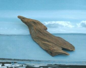 soaring bird natural raw driftwood sculpture wood art supply 1095