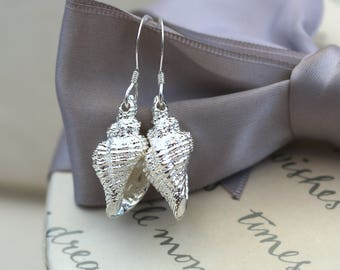 Silver Conch Shell earrings with Sterling earwires