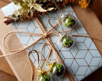 Terrarium Bead Earrings in Silver or Gold