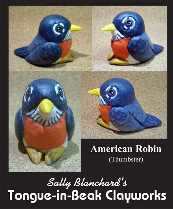 "American Robin - Sally Blanchard's Tongue-in-Beak ""thumbster"""