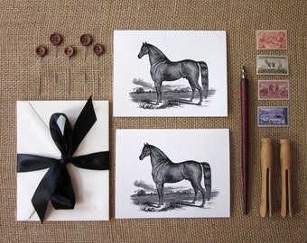 Black Horse Note Cards Set of 10 with Matching Envelopes