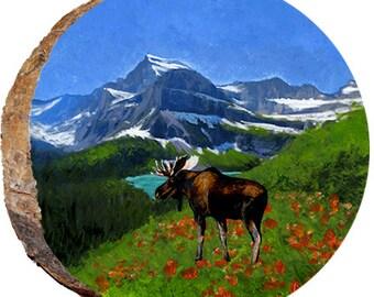 Glacier National Park - DAE191