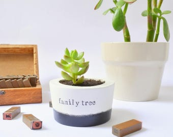 "Meaningful Mothers family gift, Succulent, Cactus, Planter with quote ""family tree"", grandma present, granddad gardening love, under 15 gift"