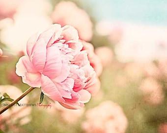 Pink Peony Wall Art, Flower Photography, Pink Peonies, Girl Nursery Wall Art, Peony Home Decor, Peonies, Pink & Blue