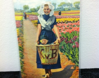 Tulip Time Post Card