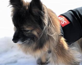 Dog T-Shirt/Black/Mesh/Small Dog T-Shirt/Dog Clothes/Hoodie/T-Shirt