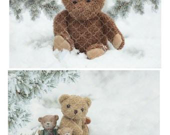 Teddy Bear Digital backdrop set