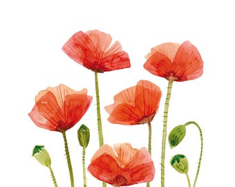 Watercolor Wall Art, Poppies Artprint, Printable poster, instant download, flowers