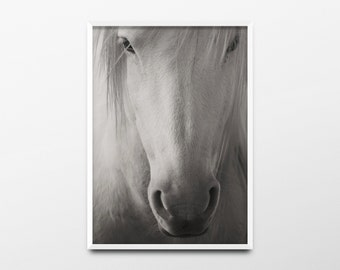 White Horse Print, Animal Art, Animal Print, Animal Wall Art, Minimalist Print, White Horse Decor, White Horse Wall Art, Woodland Nursery