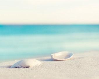 "Seashell Photography - beach ocean photo aqua blue white sea shell print coastal seashore wall art beach bathroom wall decor, ""Serenity"""