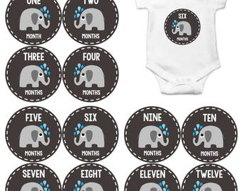 Monthly Baby Stickers, Neutral Monthly Bodysuit Stickers, Monthly Stickers, Baby Month Stickers, Baby Monthly Stickers, Elephants  1084