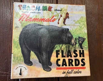 Vintage prehistoric flashcards 1962 small prints mammals Teach Me About Mammals animal flash cards