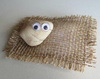 03334a85b0cfc Pet Rock collectible- googley eyes - wire glasses - natural smile - pet  rock collectible