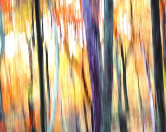 Woods Ablaze