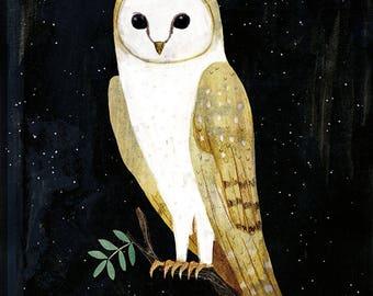 The Barn Owl print
