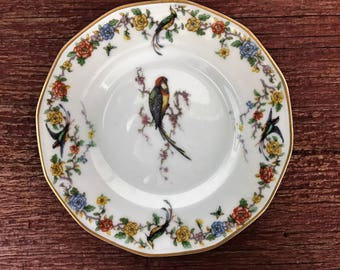 """Antique Theodore Haviland Limoges France Plate - Arcadia Pattern - Bread & Butter Plate - 6 3/8"""" Diameter - Gold Rimmed - Exotic Birds"""