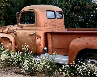 Old Truck - Rusty Old Truck - International L 110 - Old International - Truck in the Flowers - Fine Art Photography