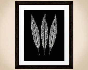 Bird Feathers art print, home decor, hand drawn nature print in black and white, wildlife art for INSTANT DOWNLOAD