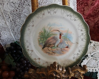 Crested Pigeon Bird Plate signed by Artist R.K. Beck - marked Limoges China