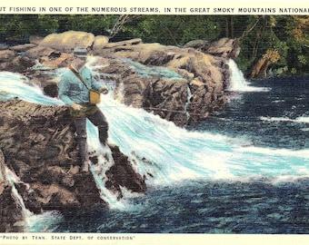 Smoky Mountains, Trout Fishing, Fishing, Fisherman - Vintage Postcard - Postcard - Unused (HH)