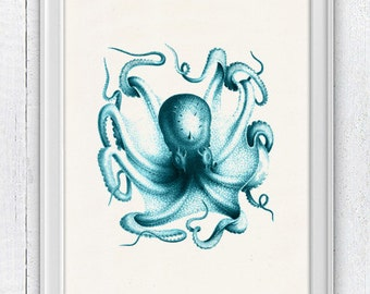 Vintage octopus n6- sea life print-Turquoise octopus- vintage natural history SAS037