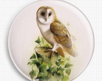 Needle Minder, Cross Stitch, David Finney , CrossStitch, 'Barn Owl II', Owl Minder, Cross Stitch Keeper, Fridge Magnet, Pin Keeper,