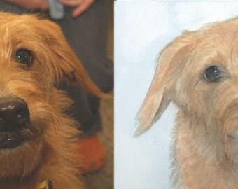 Custom Pet Portrait, Original Watercolor Painting, Dog or Cat