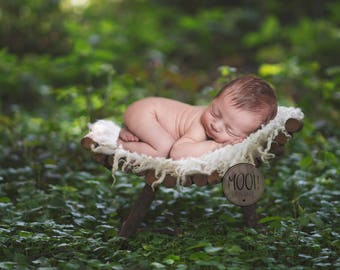 Digital Prop for Newborn - Digital background - Newborn Photography - forest - tree - nature - branch
