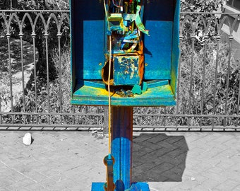 "Abandoned Six Flags - Photo Art Print - ""TOTALLED TELEPHONE"""
