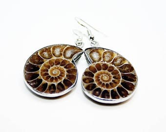 Ammonite Earrings Stone Fossil Drop Earrings Dangle Earrings Ammonite fossil earrings statement earrings Boho stone earrings