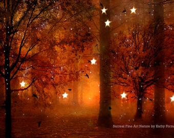Nature Photography, Surreal Haunting Fairy Lights Stars Trees Print, Autumn Fall Woodlands, Orange Brown Fairytale Fantasy Nature Photograph