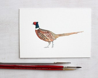 Ring-necked Pheasant Original Watercolor Painting, small bird painting